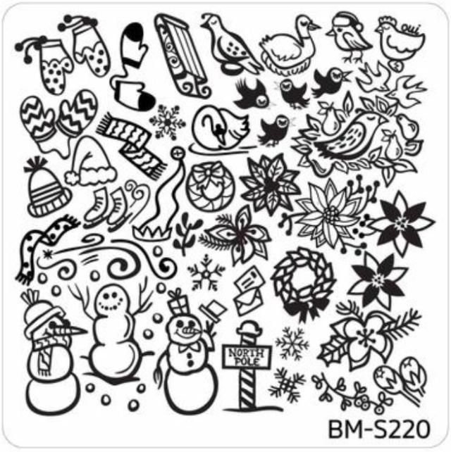 BM-S220.png